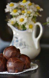 Fleurs + chocolat